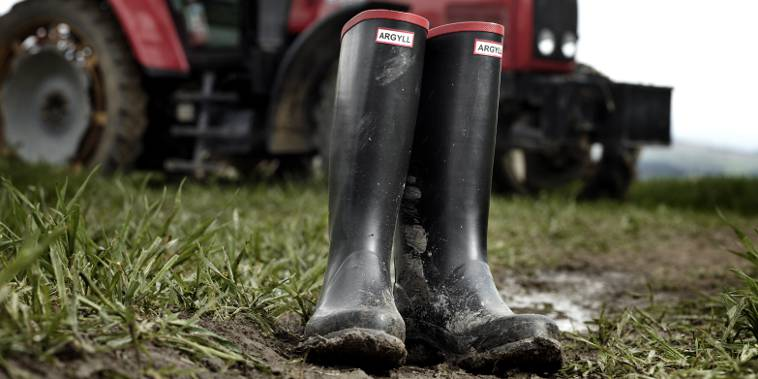 Traditional Wellies